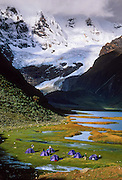 Trekkers tents at Lake Jahuacocha (4066 m or 13,340 feet), Cordillera Huayhuash, Andes Mountains, Peru, South America.