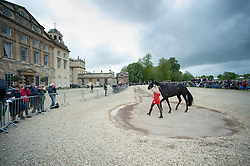 Price Jonelle, (NZL), Classic Moet<br /> First Horse Inspection - Mitsubishi Motors Badminton Horse Trials <br /> Badminton 2015