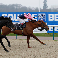 Rollin n' Tumblin and J Quinn winning the 2.30 race