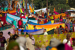 Groups of Hindu pilgrims air dry their sari's after an auspicious dip the holy Ganges during the Kumbh Mela.