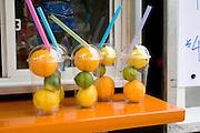 Fruit juice stand display of lemons limes and orange drink ingredients. Grand Old Day Street Fair St Paul Minnesota USA