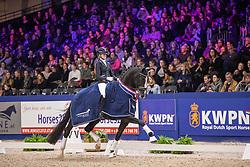 Van Der Putten Marieke, NED, Jameson RS 2<br /> KWPN hengstenkeuring - 's Hertogenbosch 2020<br /> © Hippo Foto - Dirk Caremans<br /> 01/02/2020