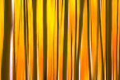 Abstract and Artsy Images