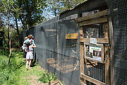 Wildcare animal rescue open house day for Oklahoma Today