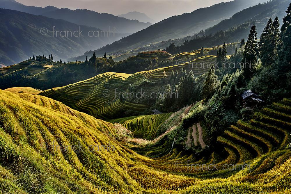 rice terraced fields of Wengjia longji Longsheng Hunan China