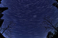 Winter Nighttime Sky Over New Jersey. Composite star trail image (04:29-04:59) taken with a Nikon D850 camera and 8-15 mm fisheye lens (ISO 800, 15 mm, f/8, 30 sec). Raw images processed with Capture One Pro and the composite created with Photoshop CC (statistics, maximum).