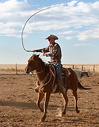 Ryan Strieter uses a bull whip to move cattle. The cowboy does not hit the cattle with the whip. The sound of the whip cracking over their heads is enough to move the cattle.