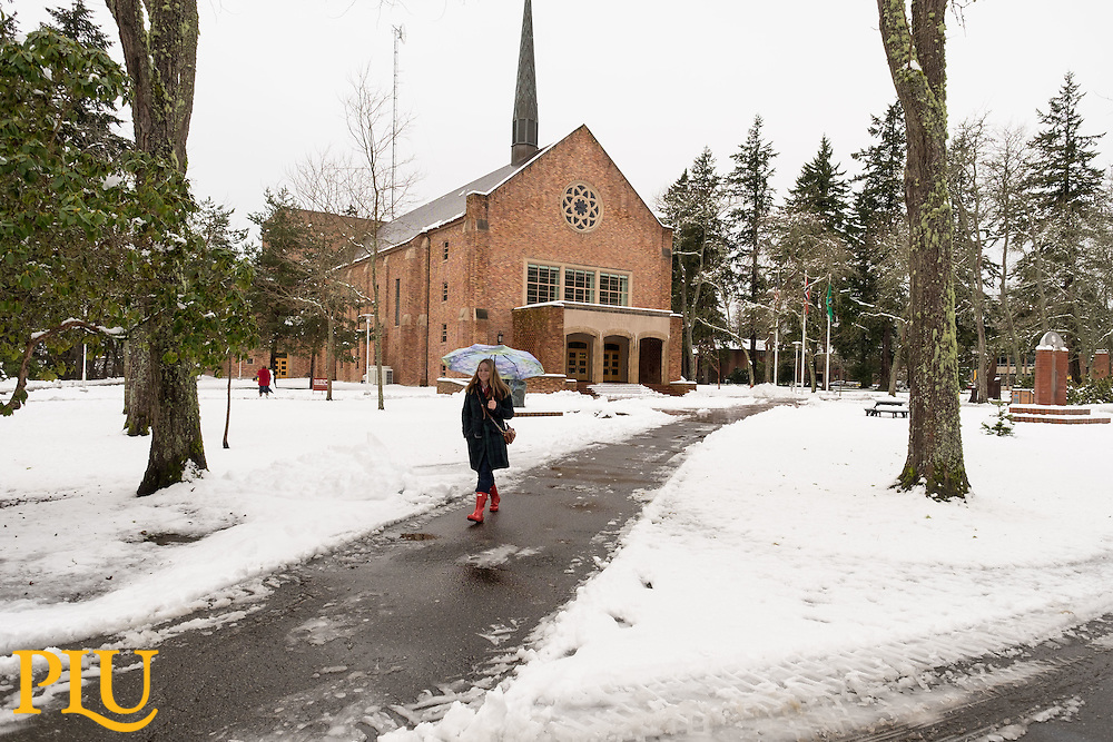 snow at PLU,  Monday, Feb. 6, 2017. (Photo: John Froschauer/PLU)