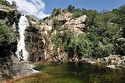 Italien researcher Giuseppe Sotgiu are taking samples in a pond in north Sardinia. Sardinia, Italy | Giuseppe Sotgiu besucht das am Monte Limbara gelegene, typische Habitat des Sardischen Scheibenzünglers (Discoglossus sardus) und des Sardischen Gebirgsmolchs (Euproctus platycephalus).