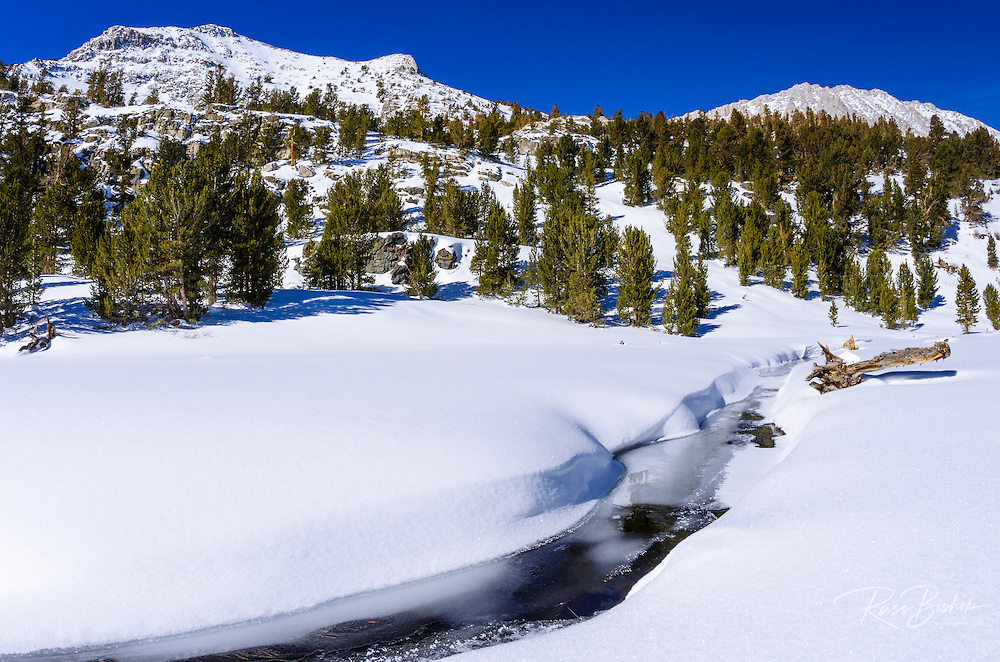 Rock Creek and Mount Starr in winter, John Muir Wilderness, Sierra Nevada Mountains, California  USA