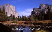 YOSEMITE IN AUTUMN 1088.JPG <br /> Half Dome and El Capitan Soar above the Valley Floor