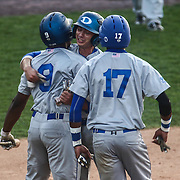 Dover Senators Infielder Jordan Hutchins (2) celebrates with his teammates after crossing home plate to take 3-0 lead during a DIAA baseball semifinal game between the St. Marks Spartans and Dover Senators at Frawley Stadium Saturday. May 28, 2016 in Wilmington.