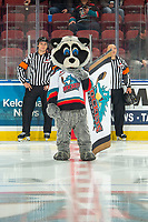 KELOWNA, BC - OCTOBER 16:  Rocky Raccoon, the mascot of the Kelowna Rockets stands on the ice at the start of the game ahead of referees Corey Koop and Sean Raphael at Prospera Place on October 16, 2019 in Kelowna, Canada. (Photo by Marissa Baecker/Shoot the Breeze)