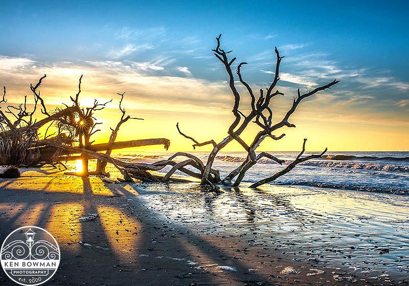 Botany Bay beach sunrise #1