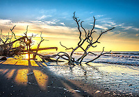 Botany Bay beach sunrise #1