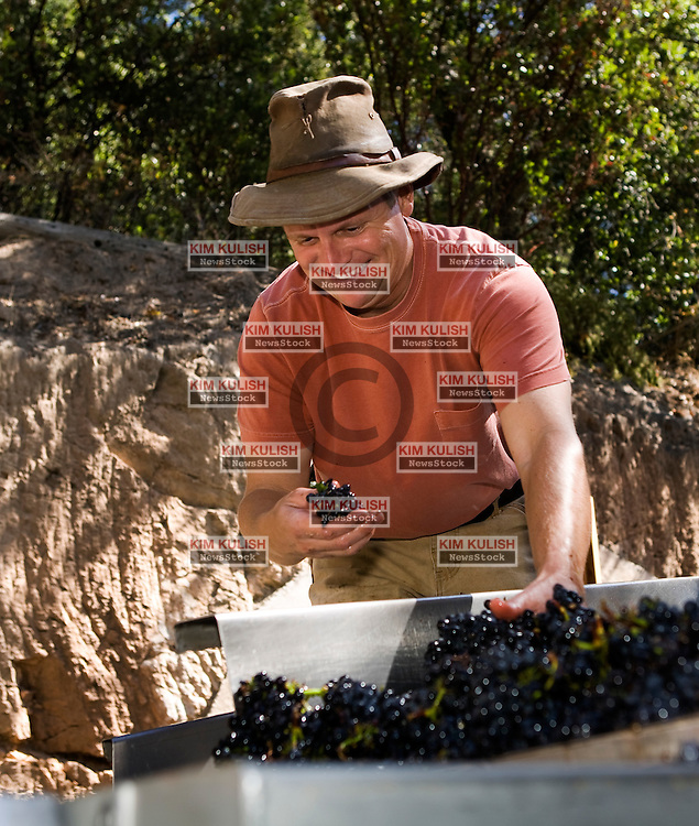 Winemaker Kent Fortner, of Road 31 Wine Company, and his crew crush his Pinot Noir wine grapes harvested from the Carneros District, a cool, wind-swept region that borders the San Pablo Bay and marks the entrance to both Napa and Sonoma valleys. Photo by Kim Kulish