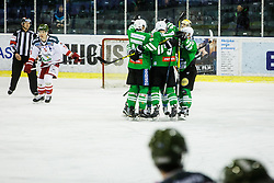 Players of Olimpija during ice hockey match between HDD Olimpija Ljubljana and HC Bolzano in EBEL league, on Januar 9th, 2017 in Hala Tivoli, Ljubljana, Slovenia. Photo by Grega Valancic / Sportida