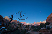 Several prominent peaks in Zion National Park, Utah, including the Towers of the Virgin, are lit by alpenglow about a half hour before sunrise. The peaks, from left-to-right: The Watchman, The West Temple, The Sundial, The Altar of Sacrifice, The Sentinel, The Streaked Wall, and the East Temple.