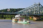 Dampfer, Elbe, Blaues Wunder, Loschwitz, Dresden, Sachsen, Deutschland.|.steamer, river Elbe, Blaues Wunder (bridge Blue Wonder), Loschwitz, Dresden, Germany