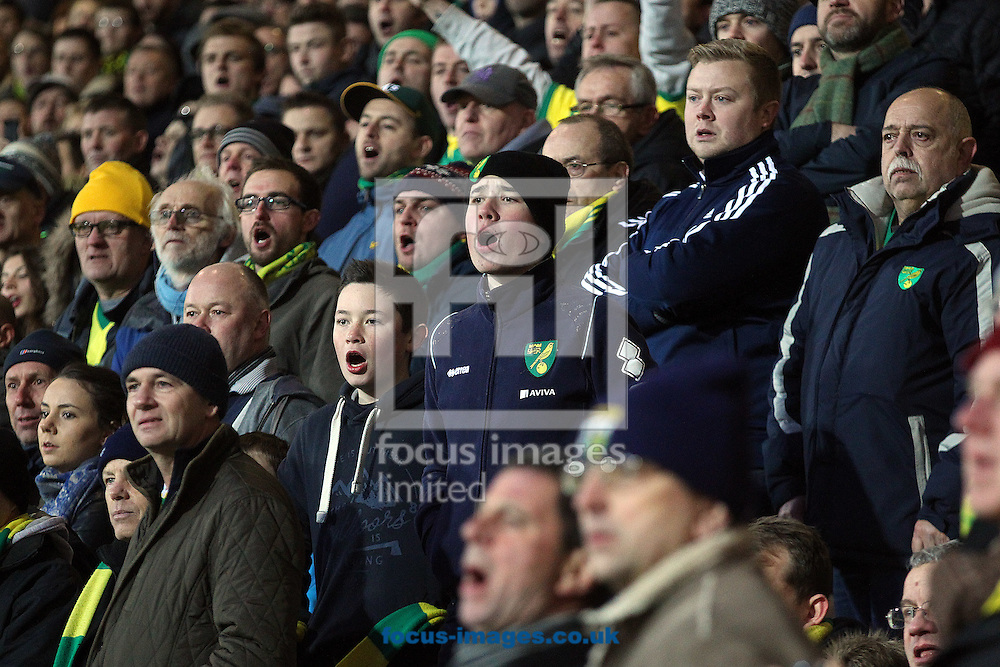The traveling Norwich fans feel the stress during the match at the Goldsands Stadium, Bournemouth<br /> Picture by Paul Chesterton/Focus Images Ltd +44 7904 640267<br /> 10/01/2015