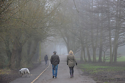 © Licensed to London News Pictures. 25/01/2017. London, UK. People walk a dog as thick freezing fog lingers during the afternoon, reducing visibility at Rickmansworth Aquadrome, in north west London. Photo credit : Stephen Chung/LNP