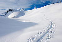 Ski tracks traversing slopes below Table Mountain, Mount Baker Wilderness Washington