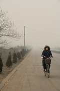 A woman rides a bicycle down a country road engulfed in pollution from a nearby coking plant in Linfen, China.