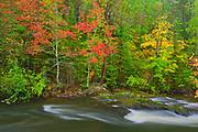 Berry Creek in autumn<br />Near Sioux Narrows<br />Ontario<br />Canada