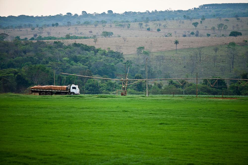 Inhauma_MG, Brasil...Gestao no campo na Fazenda Sao Joao em Inhauma, Minas Gerais. ..Field management in the Sao Joao Farm in Inhauma, Minas Gerais. ..Foto: JOAO MARCOS ROSA / NITRO..