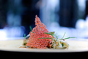 BEVERLY HILLS, CA- September 3, 2016:  Crispy scaled black bass, main lobster, caramelized corn with a coral chip.  (Mariah Tauger /  For the Times)