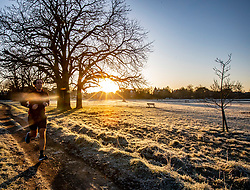 © Licensed to London News Pictures. 19/01/2020. London, UK. Runner enjoys a frosty start to the day on Wimbledon Common as forecasters predict below zero mornings for the week ahead. Photo credit: Alex Lentati/LNP