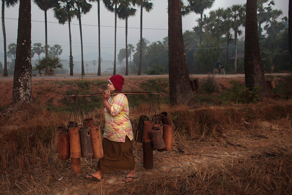Palm tree farmers work early in the morning to get the salvia to after that boil the liquid to transform in a kind of beer or in some cases in sugar at Ka Myaw Gyi in the outskirts of Dawei, Myanmar on Monday, 27, Jan. 2014.