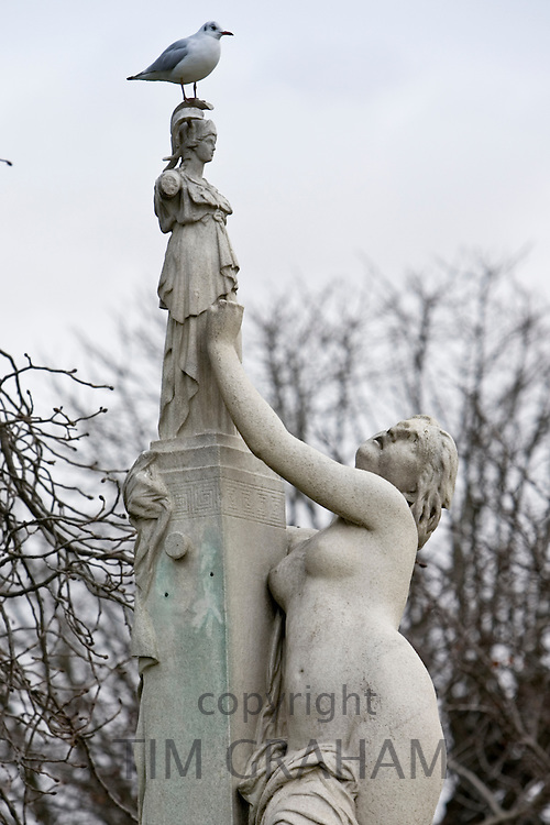 Seagull perches on female sculpture in Jardin des Tuileries, Paris, France