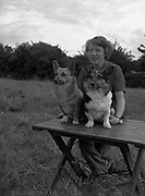 04/08/1952 <br /> 08/04/1952<br /> 04 August 1952  <br /> Dog Show, 18th Annual Green Star Championship at Monkstown, Co. Dublin. Miss Phoebe Holmes with Mr W.N. Bennett's two Welsh Corgis.
