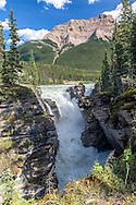 Mount Hardisty towering above Athabaska Falls in Jasper National Park.