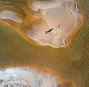 Child playing with a stick, with elongated shadow, on a sand bank in the Ebro Delta, aerial view, Tarragona, Catalonia, Spain. The Ebro Delta is the large delta area of the Ebro river, creating a huge wetland area used for agriculture and with protected areas for wildlife, including the Ebro Delta Natural Park. The area has a variety of different ecosystems including lagoons, sand dunes, salt marsh and rice fields which cover around 15000 hectares. Picture by Manuel Cohen