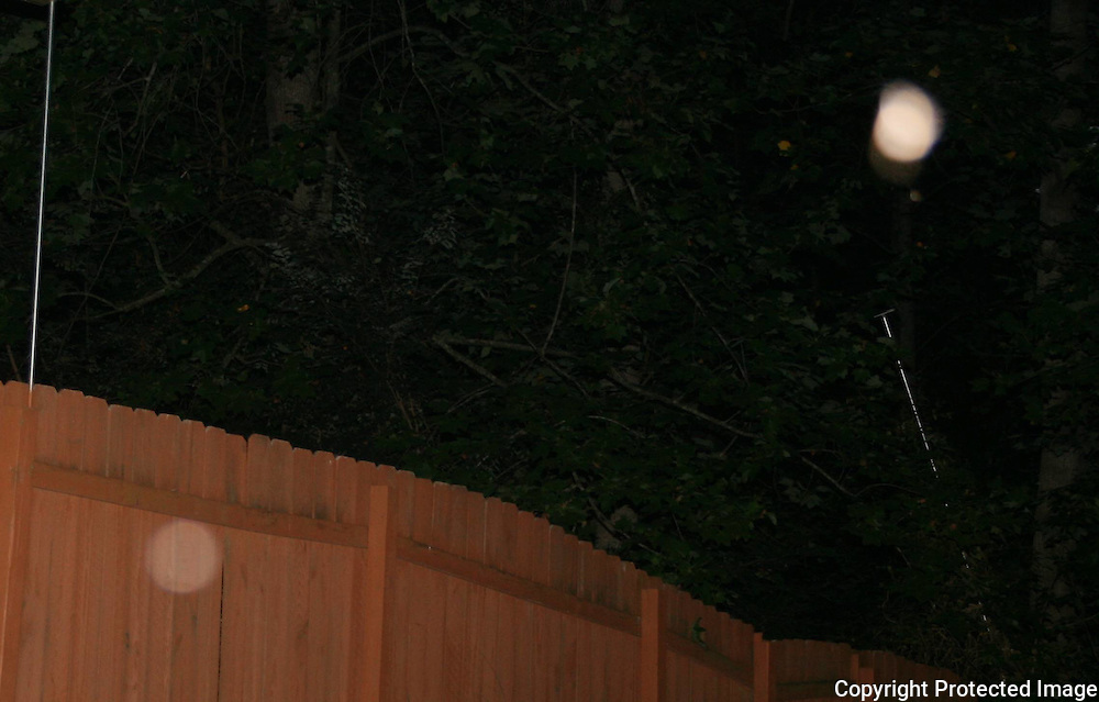 A vibrating pink orb and a translucent, milky orb floating near fence at dark.