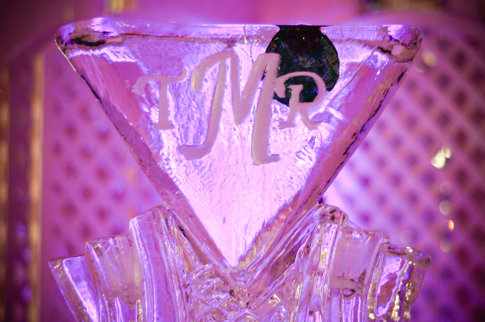 Martini shaped ice scuplture with Tara & Randy's initials on display at their wedding reception, The Carlisle, Lombard, IL
