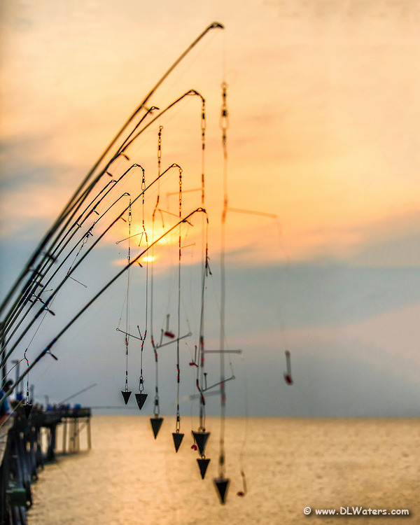 A line of fishing poles silhouetted against the sun at Avalon pier Kill Devil Hills.