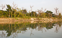 River and forest in Bardia National Park, Nepal