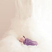 Newborn Baby Photographer in Windhoek