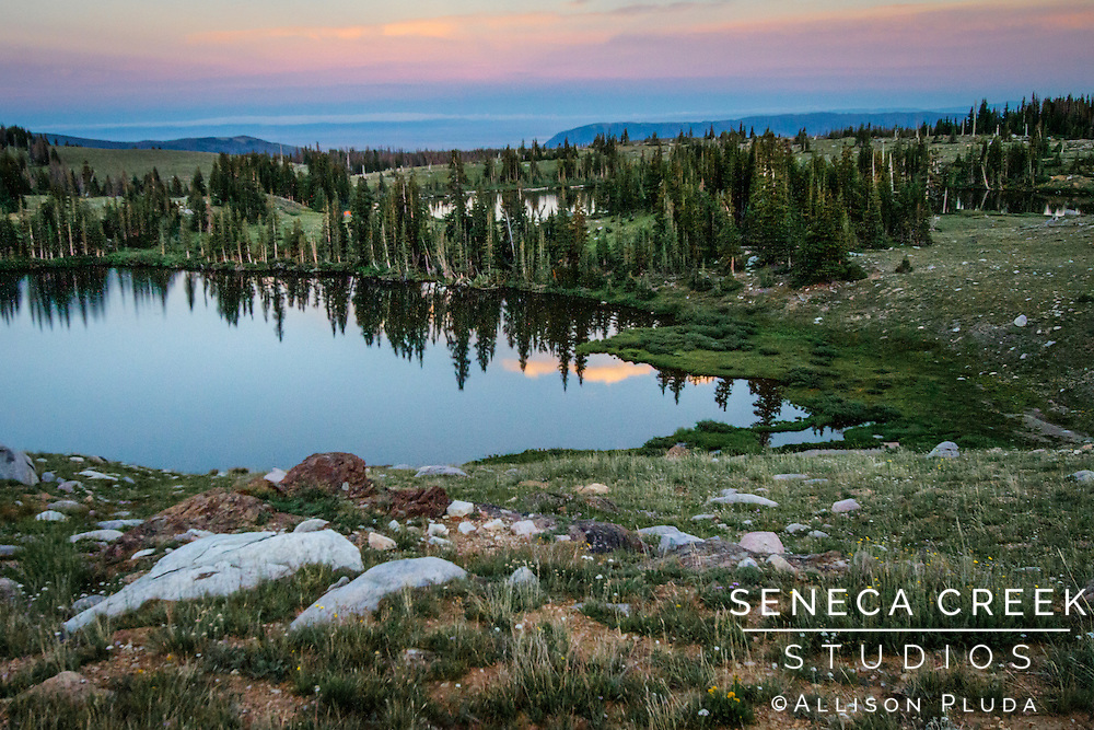 &quot;Wilderness is not a luxury but a necessity of the human spirit.&quot;<br />        -Edward Abbey
