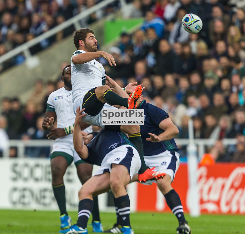 Gordon Reid tackles Willie Le Roux in action during the Rugby World Cup match between Scotland and South Africa (c) ROSS EAGLESHAM | Sportpix.co.uk