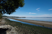 The sandbar at Cordova Bay on a summer day appears at low tide, revealing a wide stretch of soft sand.