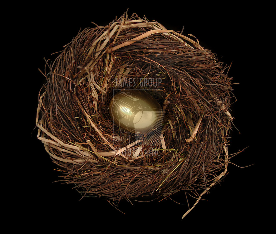 Golden egg in a bird's nest on a black background