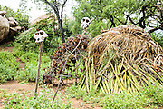 Baboon skulls in the Hadzabe village The Hadza, or Hadzabe, are an ethnic group in north-central tanzania, living around Lake Eyasi in the Central Rift Valley and in the neighboring Serengeti Plateau.