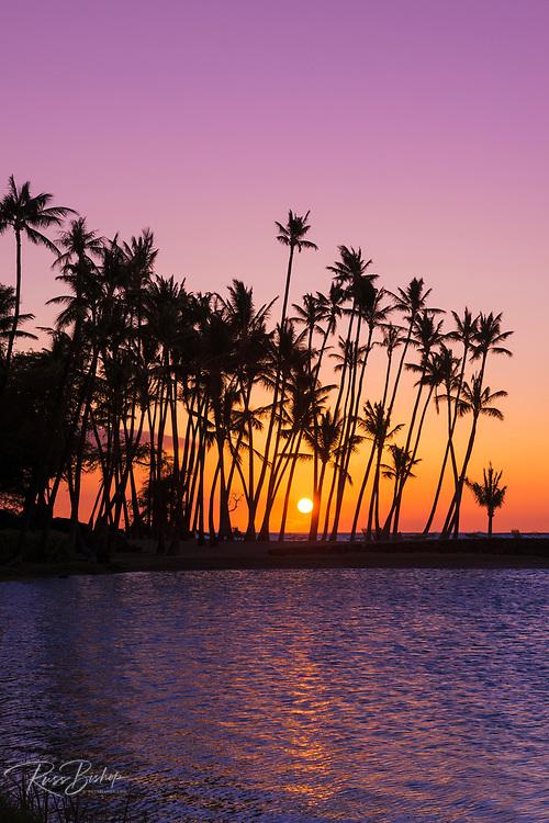 Sunset through silhouetted palms at Anaehoomalu Bay, Kohala Coast, The Big Island, Hawaii USA