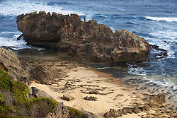 September 30, 2018 - South Africa - Coastal beach on Garden Route, Brenton-on-Sea, Eden District Municipality, Western Cape Province, Republic of South Africa (Credit Image: © Sergi Reboredo/ZUMA Wire)