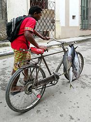 Old Havana, Cuba. Havana vieja, street. Man psuhing bicycle with fish