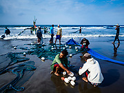 29 JULY 2017 - AIRKUNING, BALI, INDONESIA: Villagers repair and roll up their fishing net after hauling it in in Airkuning, a Muslim fishing village on the southwest corner of Bali. Villagers said their regular catch of fish has been diminishing for several years, and that are some mornings that they come back to shore with having caught any fish.    PHOTO BY JACK KURTZ